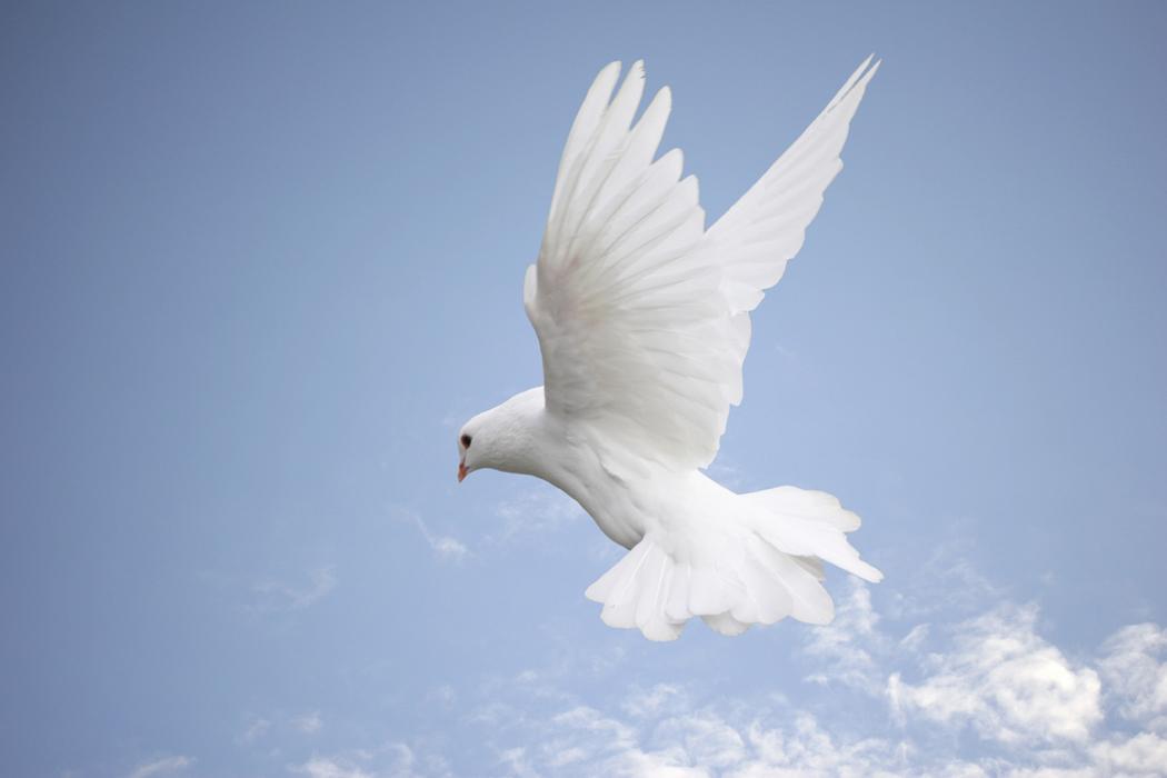 emotional freedom, emotional healing, Holding