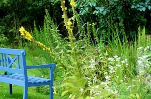 garden-bench-888035_640