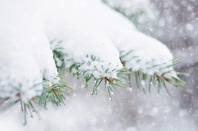 Snow Prayer – Releasing the Heavy Energies of Fear
