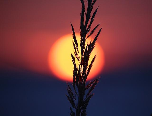 sunset-1147121_640